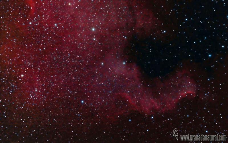 Nebulosa Norteamérica NGC 7000