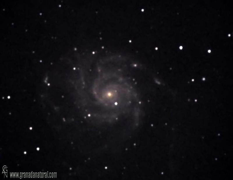 M101 Galaxia del Molinete