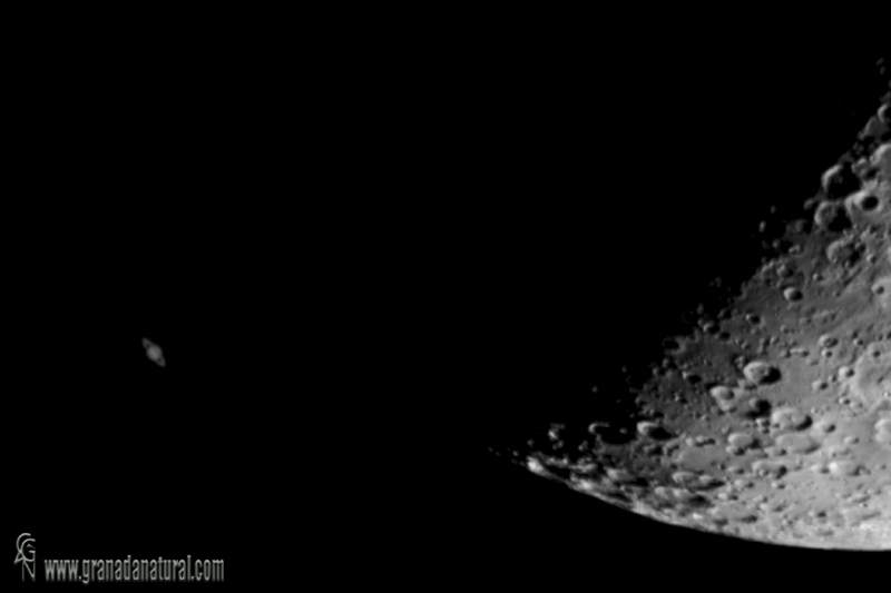Ocultacion de Saturno por la Luna (detalle)