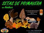 Granada Natural en las III Jornadas Micológicas de Monda (Málaga)