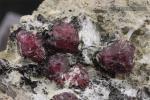 Granate almandino con sillimanita