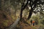 Sendero Sulayr tramo 5:Acequia de Almiar