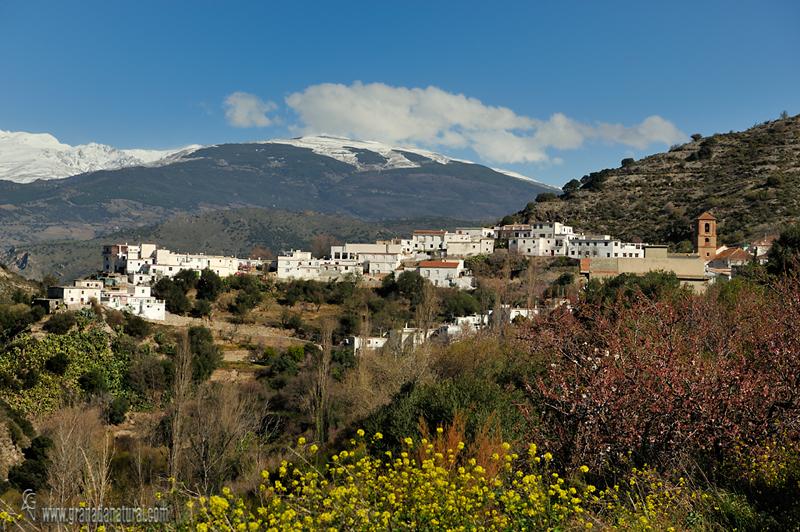 Alcazar un pueblo singular. Pueblos de Granada