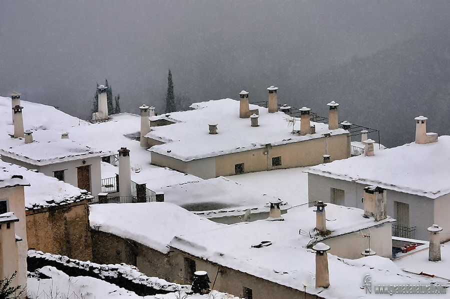 Terraos nevados de bubión.Paisajes de Granada