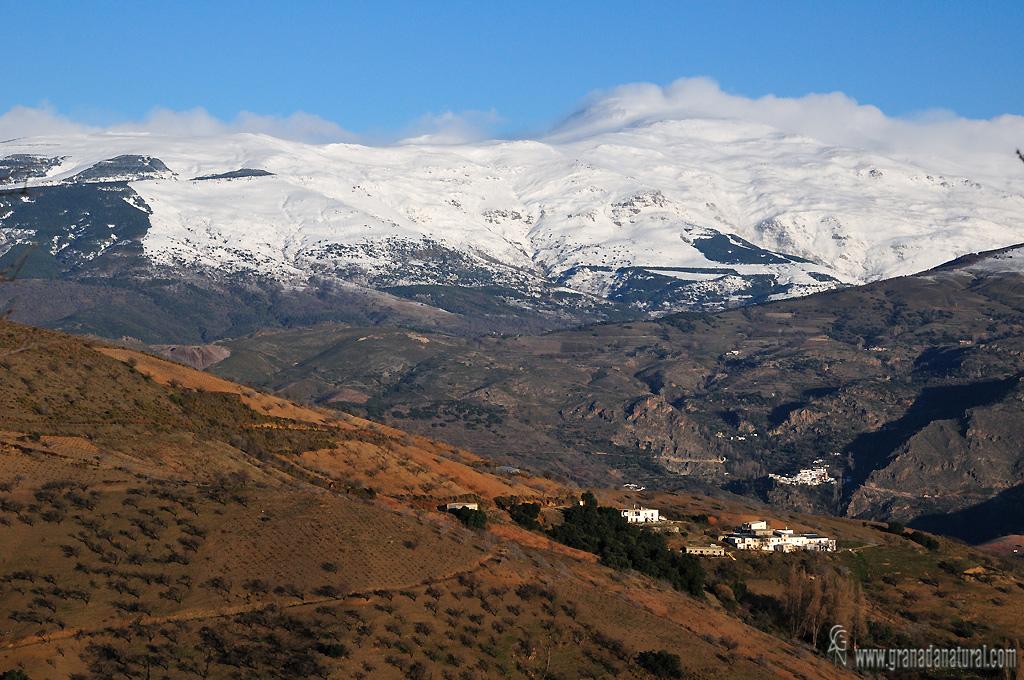 C�staras y Sierra Nevada