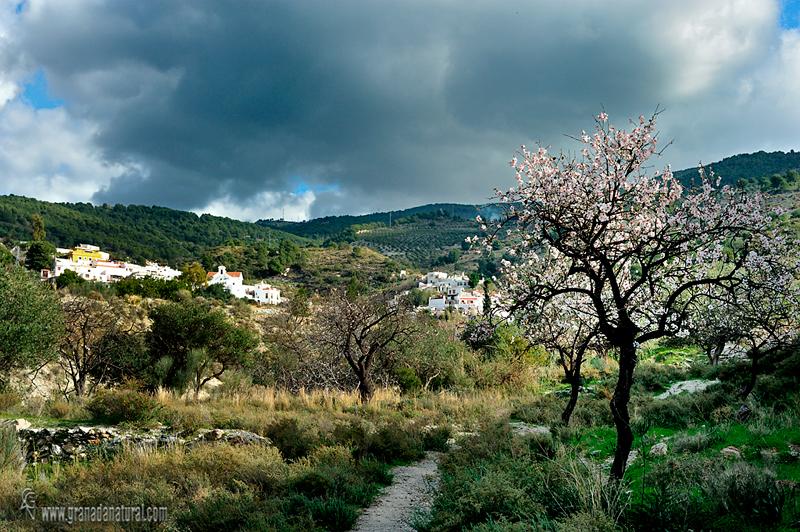 La Garnatilla y la Sierra del Jaral. Pueblos de Granada