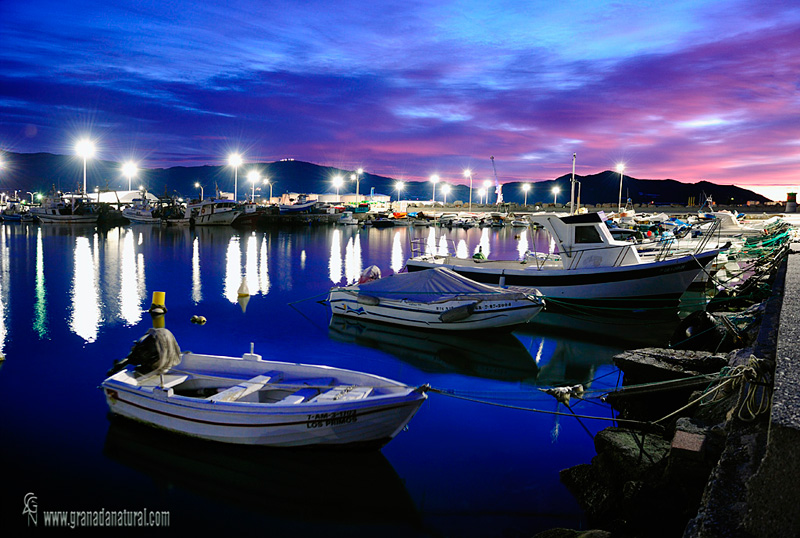 Puerto pesquero de Motril.