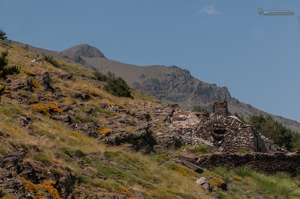 Refugio Ventura . Parque nacional de Sierra Nevada.