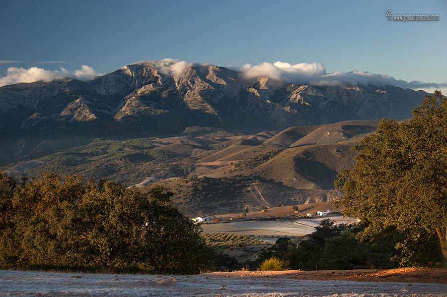 Sierra Tejeda desde los Llanos. Paisajes de Granada