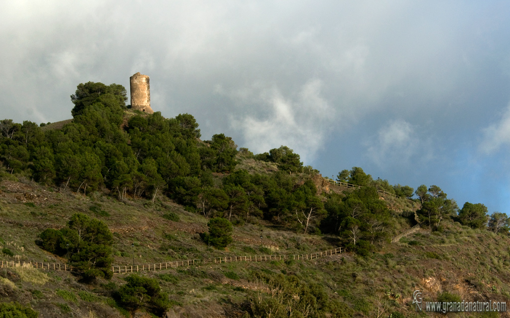 Torre Atalaya de Melicena