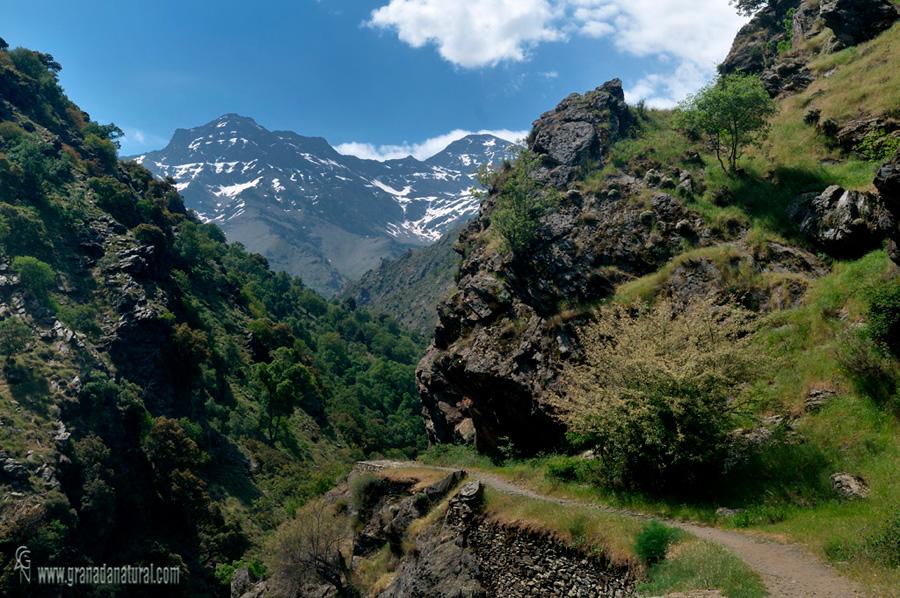 Vereda de la Estrella ( Sierra Nevada)